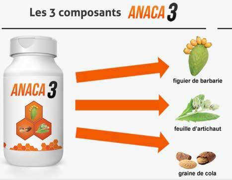 Anaca3 devrait permettre de s'assurer que les niveaux d'énergie ne faiblissent pas ou ne s'épuisent pas